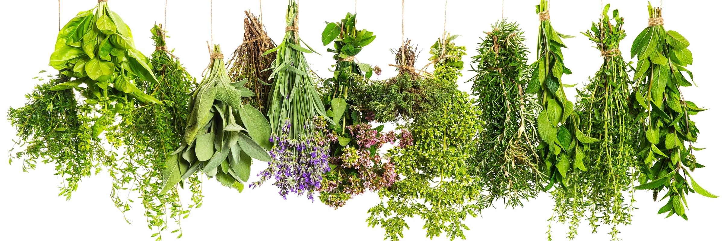 Inspiration Essential Oils - Discover the natural power of essential oils